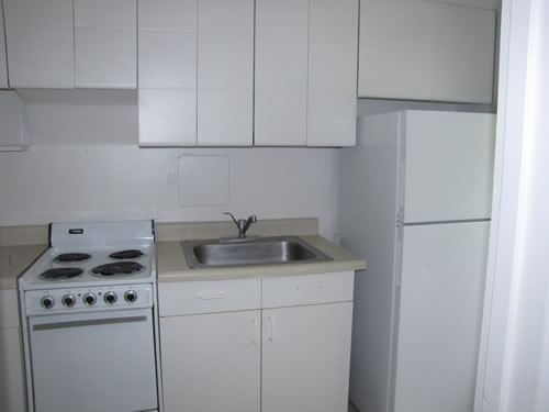 A two-bedroom apartment at The Elysian Fourplexes, 1215 Third Street, apt. 101, Moscow Id 83843