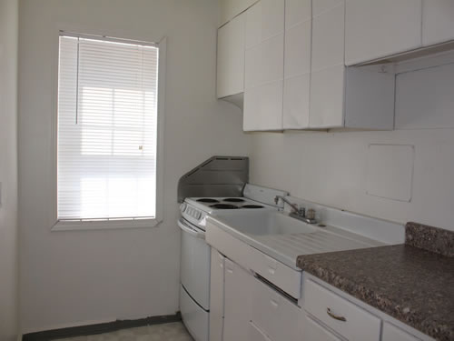 A two-bedroom apartment at The Elysian Fourplexes, 1215 Third St., #102, Moscow ID 83843