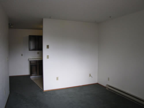 A one-bedroom at The Elysian Annex Apartments, 1210 East Fifth Street in Moscow, Id
